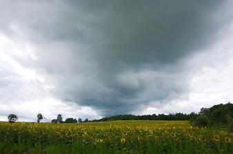 竜巻のような雲