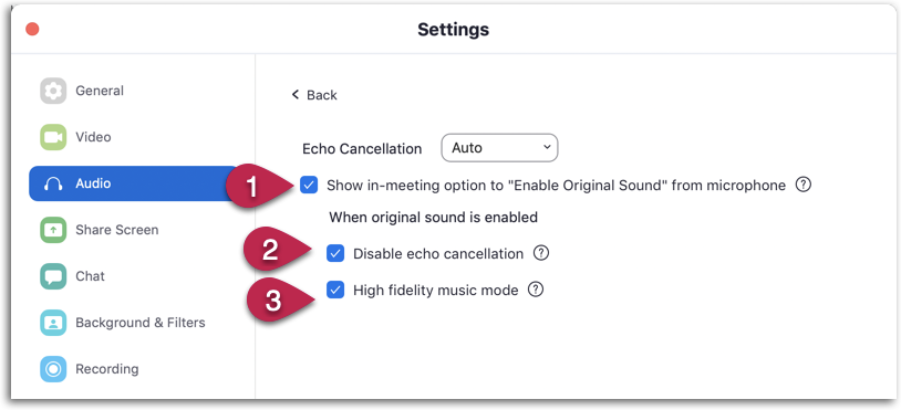 Zoom: audio settings