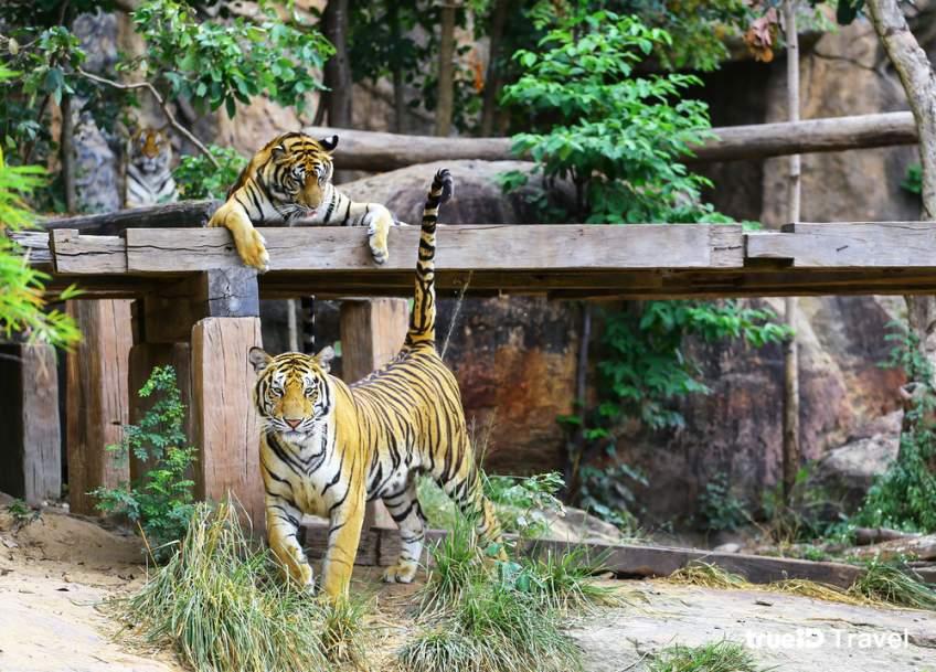 2. สวนสัตว์ขอนแก่น