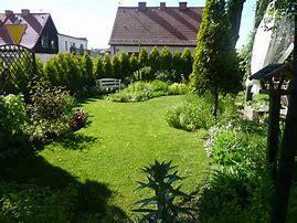 Obraz znaleziony dla: ogród