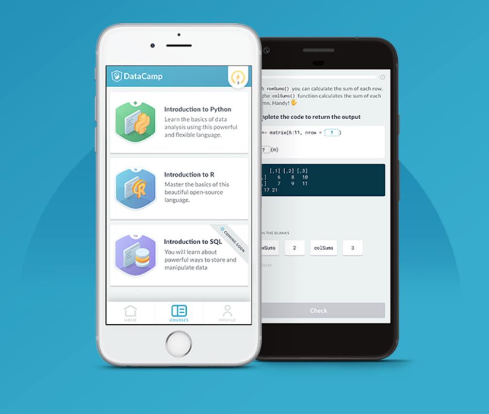 DataCamp data learning app.