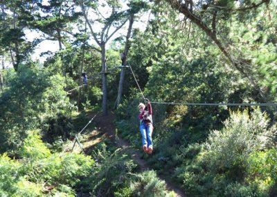 Ziplines of Acrobranch Garden Route near Wilderness
