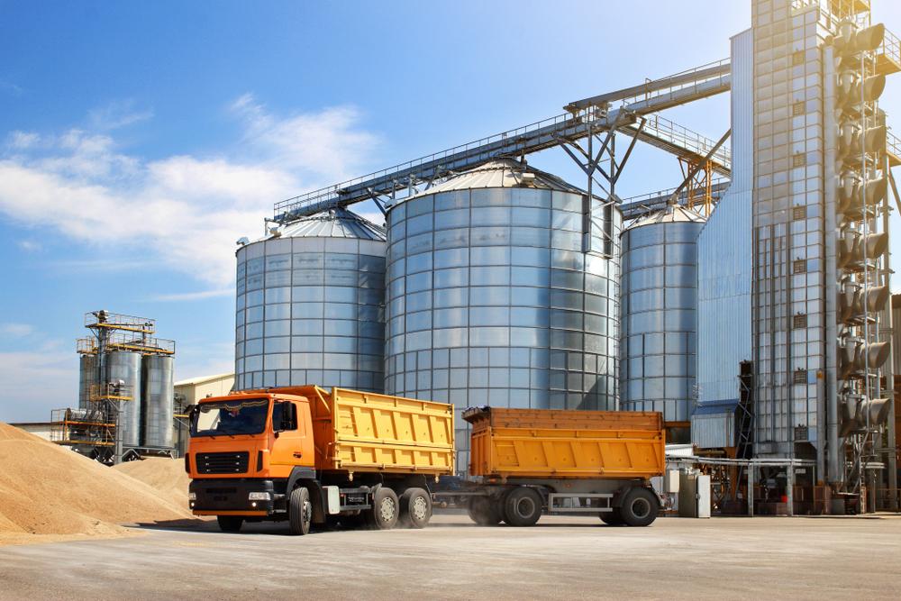 Mesmo sendo o maior produtor mundial de soja e registrando safra recorde, Brasil está importando o grão. (Fonte: Shutterstock)