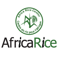 http://www.africarice.org/