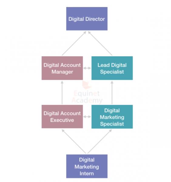 digital marketing intern career path