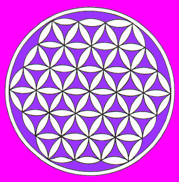 Flower of Life 1 pink & purple.jpg