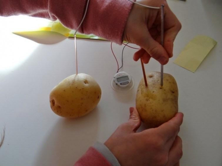 Create light from a potato