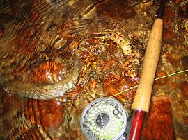 Пъстървов риболов с Royal Coachman Parachute
