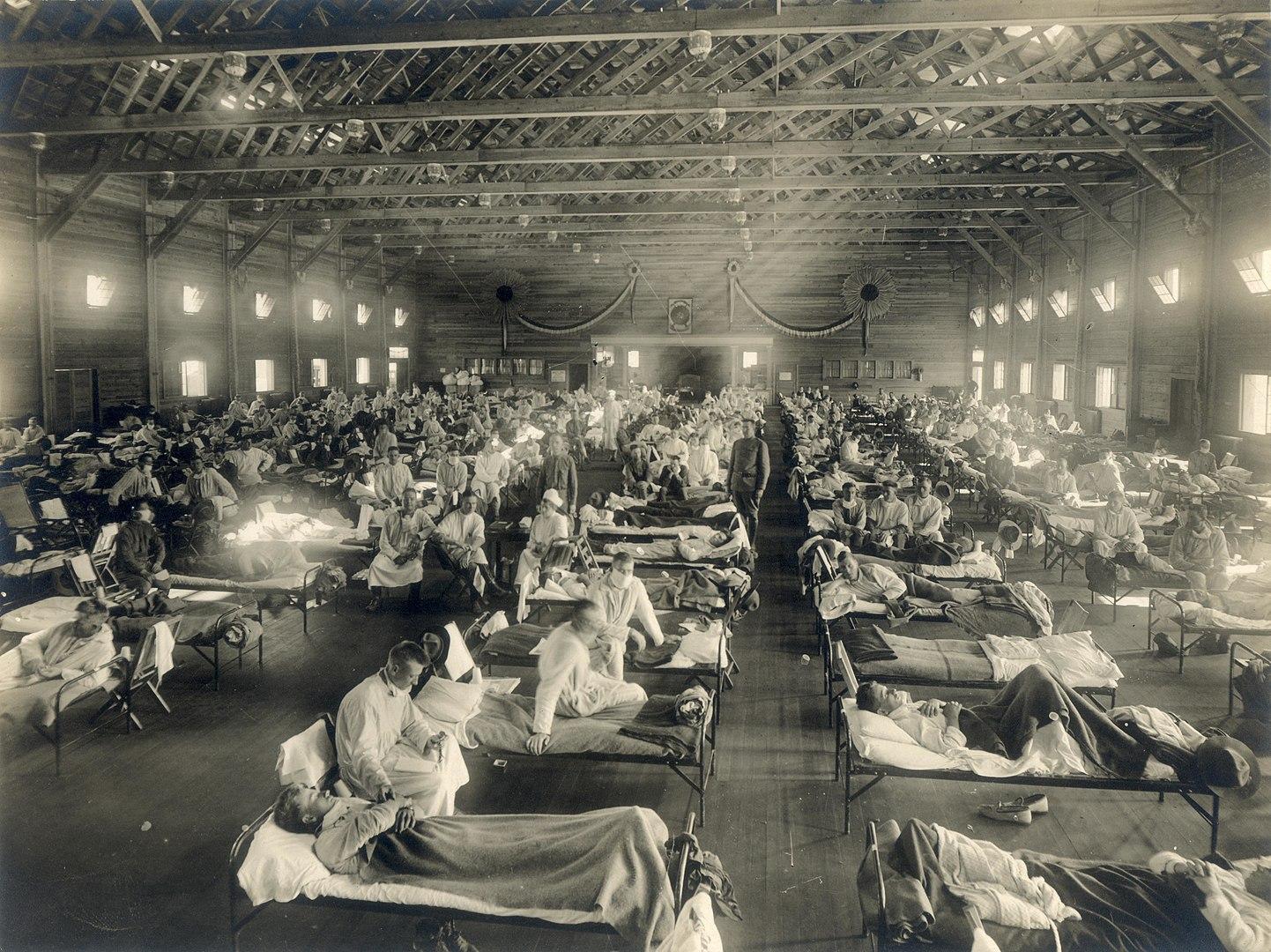 O vírus influenza causou milhões de mortes em todo o mundo em 1918. (Fonte: Wikimedia Commons)