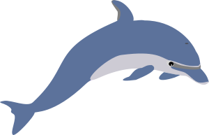 Description: Another dolphin
