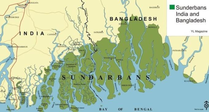 Image result for 2. Sundarbans Wetlands map