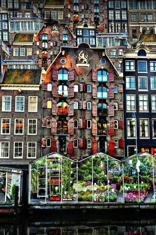 Flower Market - Amsterdam (by Thrasivoulos Panou) Netherlands. Europe.: