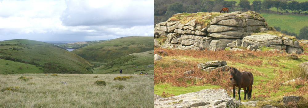 Enjoy both Exmoor and Dartmoor  while on the October half term in Devon.
