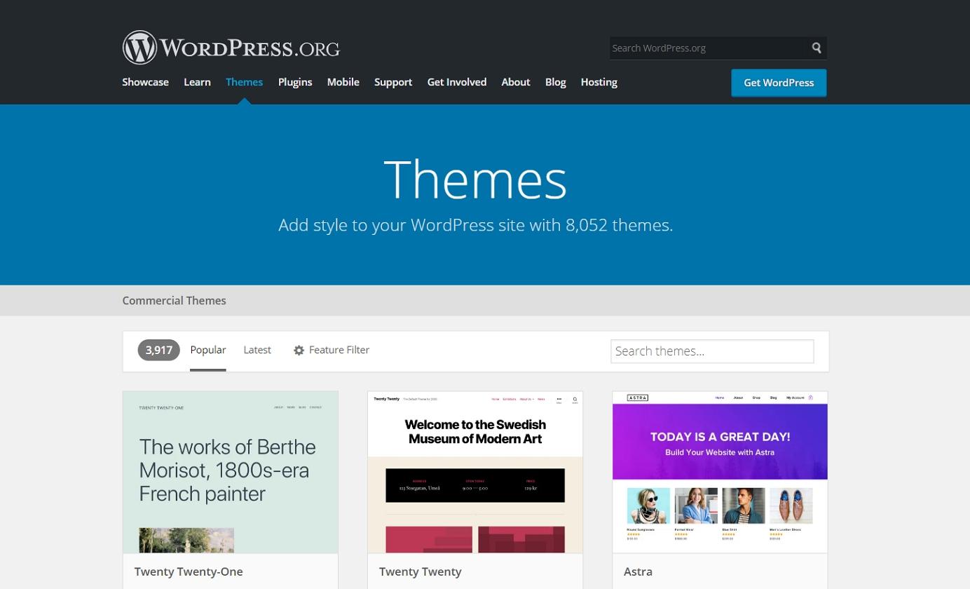 popular wordpress themes