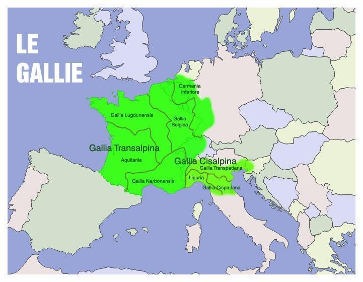 Le Radici Degli Alberi: LE GALLIE!