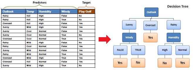 Decision Trees Questions Algorithm