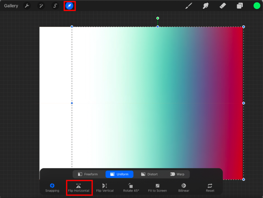 screenshot showing how to mirror in procreate