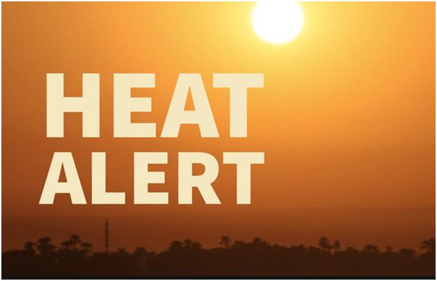 TIFA Heat Petition 2019