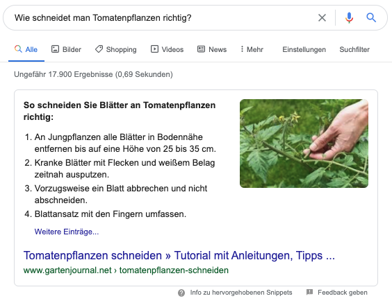 Anleitungssnippet als Featured Snippet