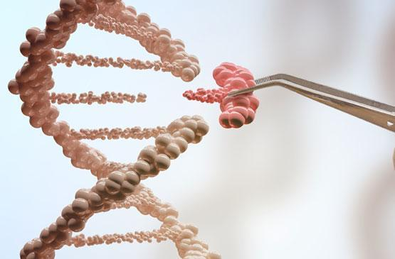 What is Biotechnology? | BIO