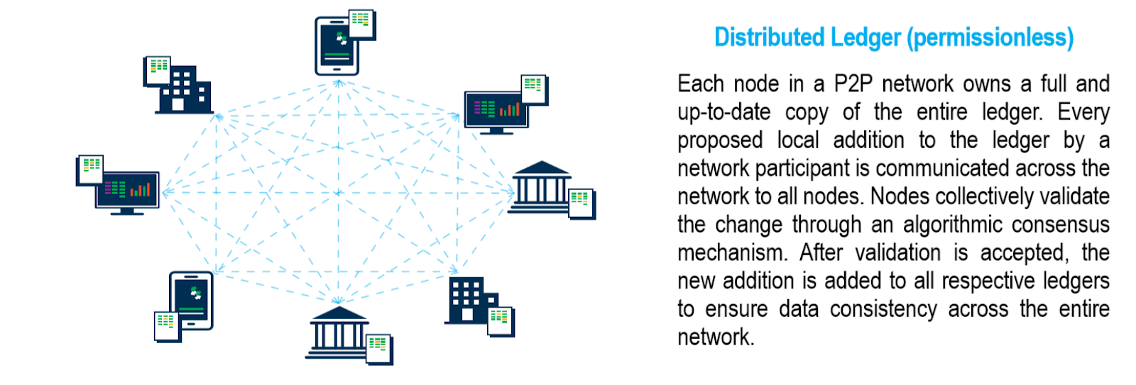 A permissionless blockchain is a public distributed ledger.