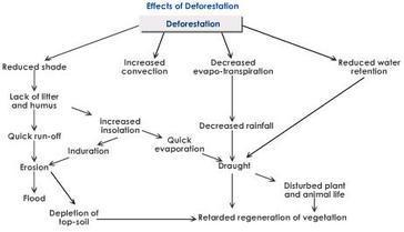 E:\deforestation-effects-biosphere.jpg