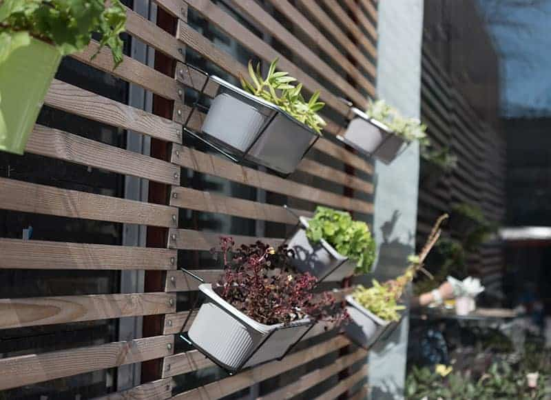 Multi-Functional garden Fence