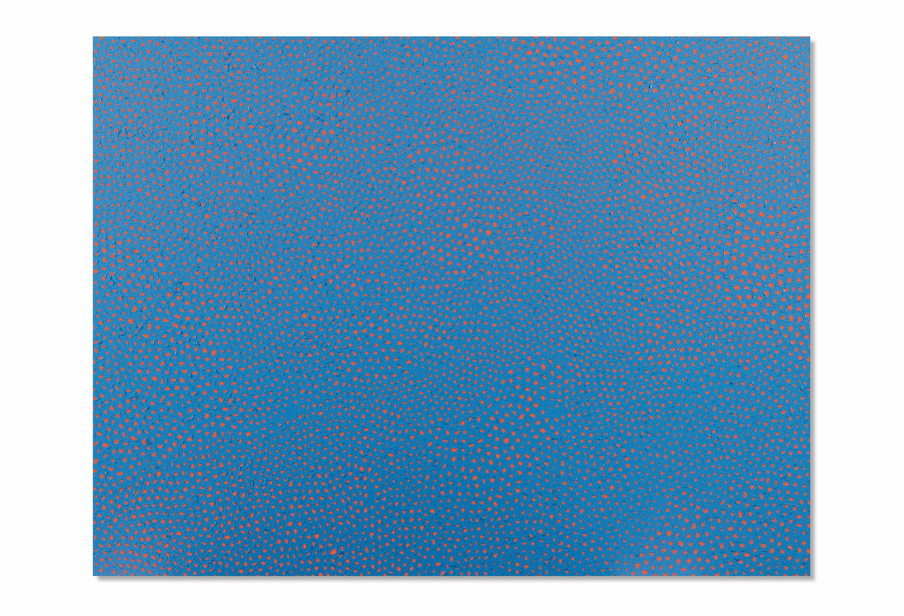 2011 Infinity Nets LNXA
