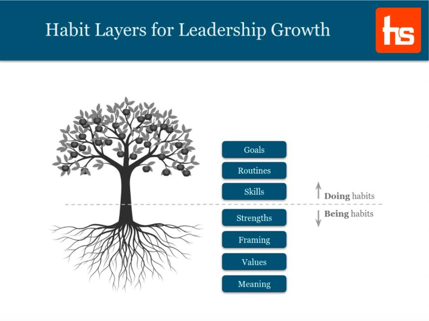 HabitStack's Methodology tree diagram