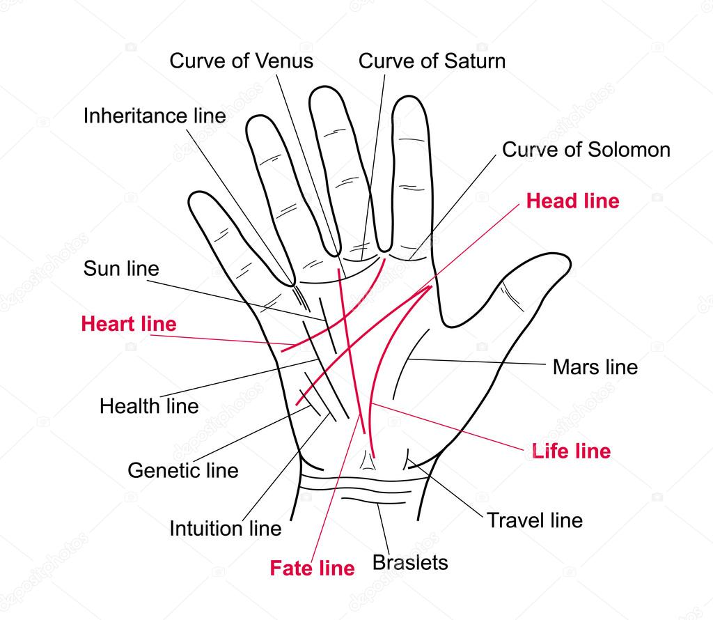 Palm Reading Online Palmistry Guide