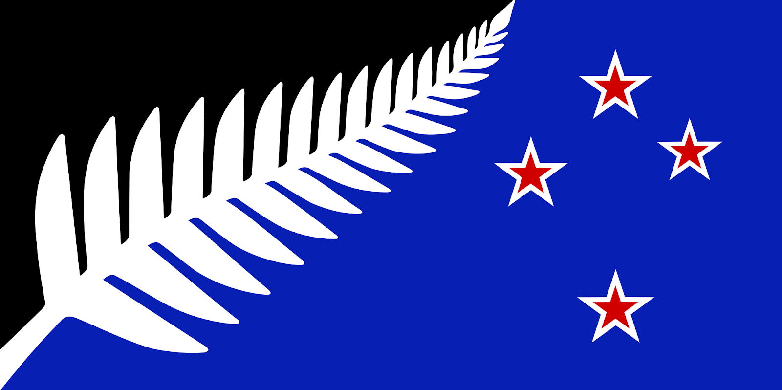 The official silver fern flag ...