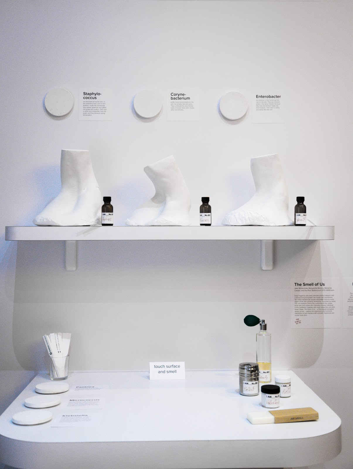 The Smell of Us by Paris Bettencourt iGEM 2014 team and I AM_____NO.001 by Sissel Tolaas at the World Perfumery Congress, 2016. Credit: Christina Agapakis.
