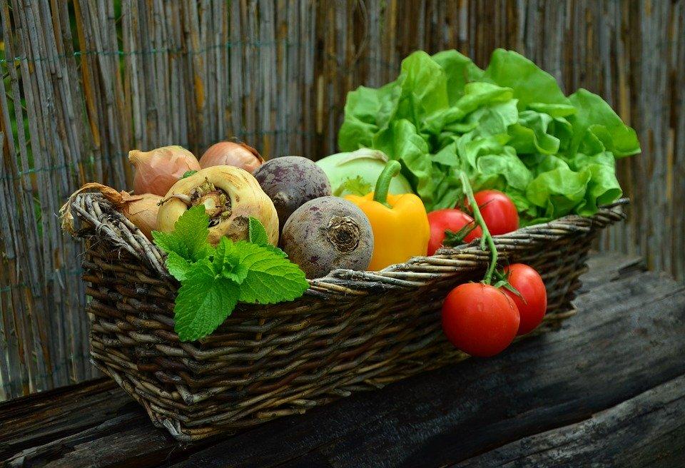 Vegetables, Vegetable Basket, Harvest, Garden, Salad