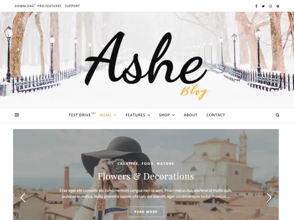 Tema WordPress Terbaik : Ashe