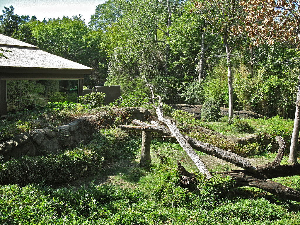 File:DallasZooGorillaHabitat.JPG - Wikimedia Commons