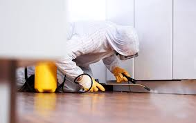 Pest control staff cleaning cabinet