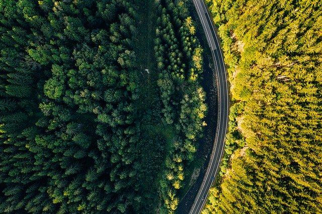 A bird's eye view of a road through a forest.