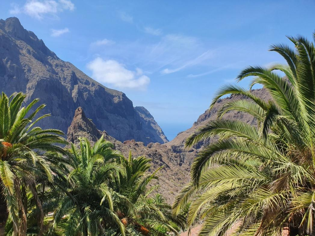 D:\Pictures\Photos\TENERIFE PHOTOS\Favs\20190907_120330.jpg
