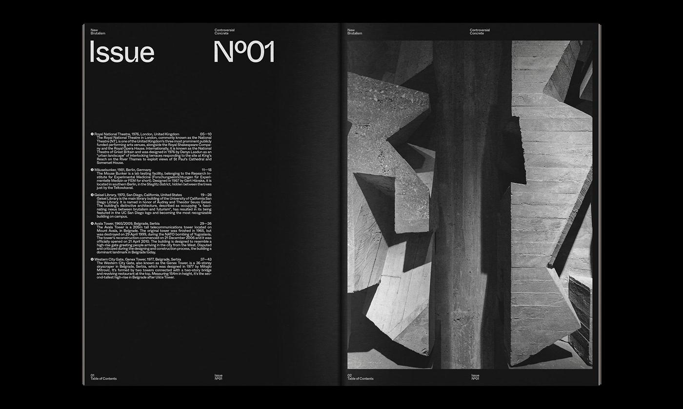 Editorial Design : New Brutalism Controversial Concrete 2