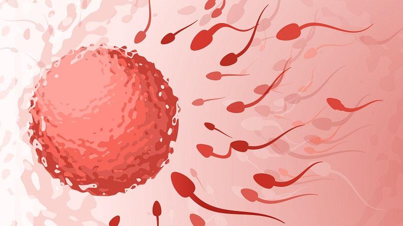 world infertility and IVF center Lajpat Nagar
