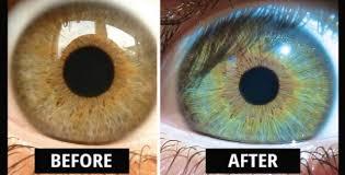changing eye color vegan diet study