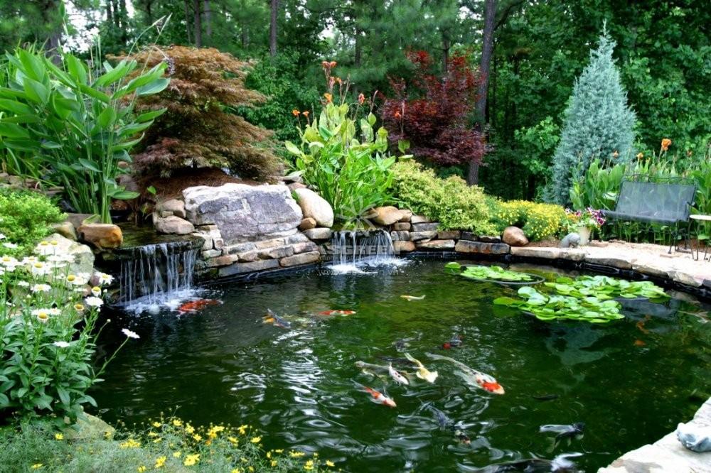 mau-ho-ca-koi-truyen-thong-koi-fish-pond-asgreen-015.jpg
