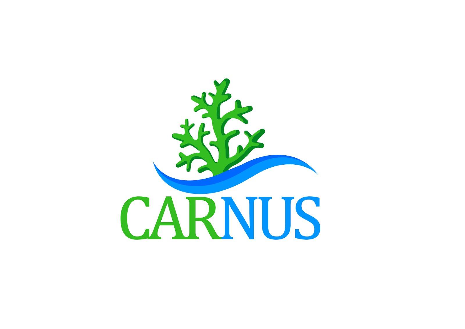 Team Logo_MAHAMERU_CARNUS.jpg