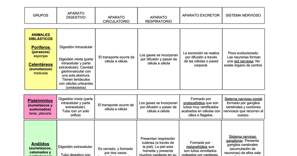 Cuadro comparativo de invertebrados y vertebrados.doc - Google Drive