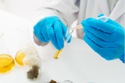 Is THC The Same As CBD