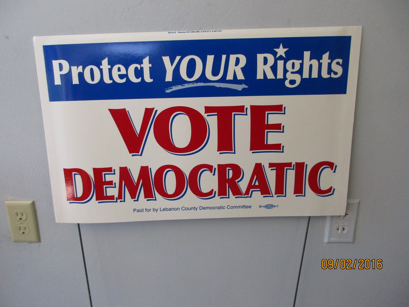 Protect Rights Yard Sign.jpg