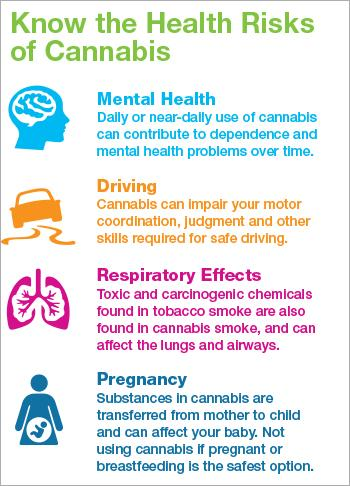 Know the Health Risks of Cannabis [infographic] | Canadian Centre on  Substance Use and Addiction