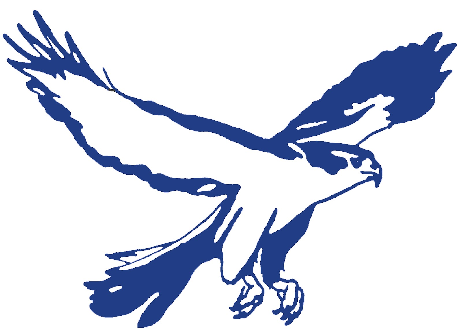 FAIRLESS FALCON ART-Blue.jpg
