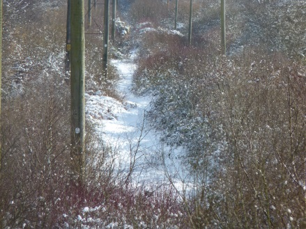 snowy view from the railway track at the secret campsite