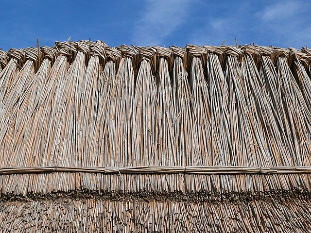 640px-Thatched_roofs_z04.JPG